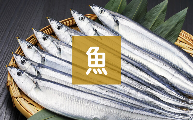 お刺身・魚類の返礼品