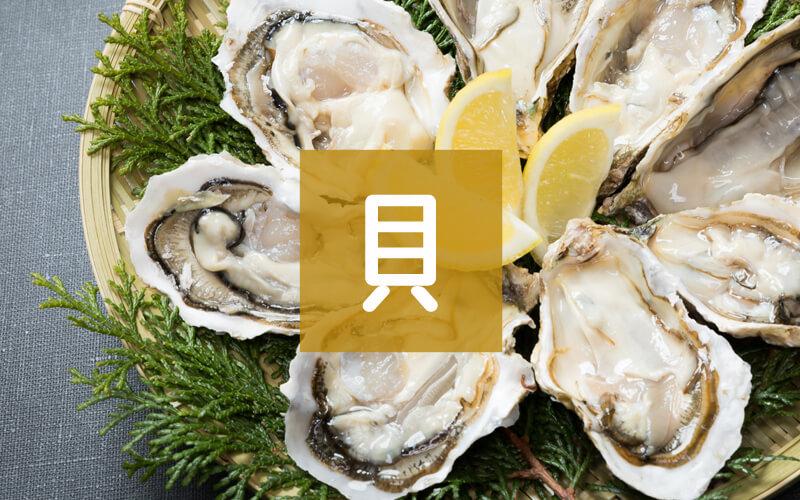 ホタテ・牡蠣・貝類の返礼品